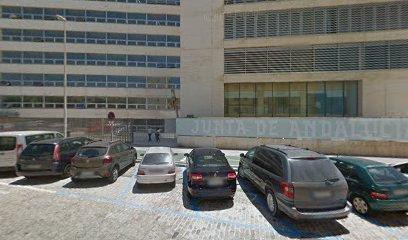 Servicio Andaluz de Empleo Dirección Provincial, Agencia de colocación en Cádiz